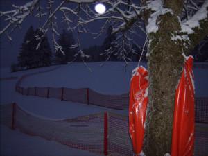 Schutzbedürftige Winterlandschaft.